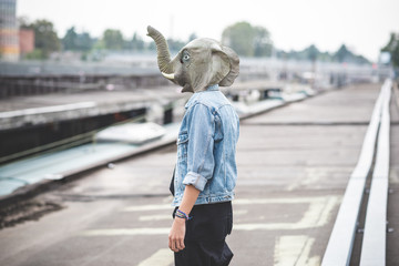 elephant mask young handsome bearded hipster man