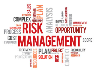Risk management words cloud business vector concept