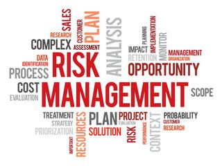 Risk management words cloud business vector concept