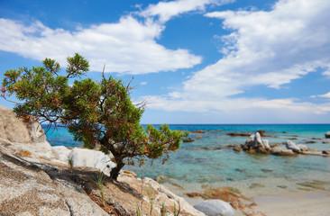 Sardinia sea coast resort in Italy