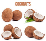 Set of four compositions of coconuts isolated