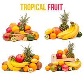 tropical fruit set of four compositions isolated