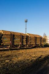 Abholzung Güterwagen