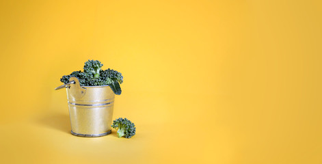Broccoli in a bucket on yellow background