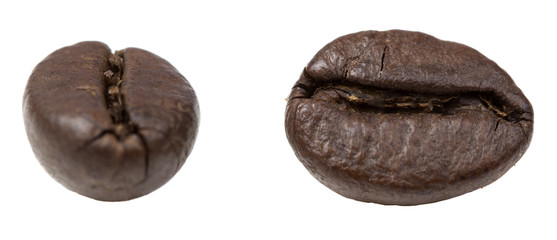 Two coffee grains