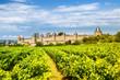 Carcassonne - 72881608