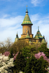 My city, Timisoara, in a spring day-3
