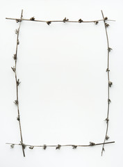 Frame made of dry tree branches.