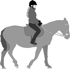 Silhouette of the equestrian of the jockey riding on a horse