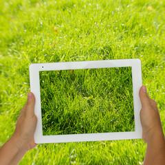 holding tablet against spring green background