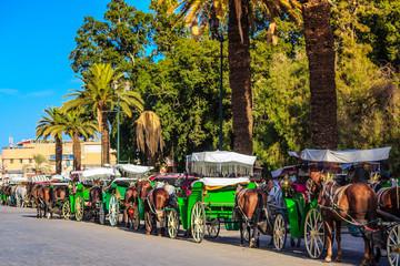 Pferdekutschen auf Gaukler Platz in Marrakesch