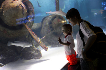 Mom with son studying marine life