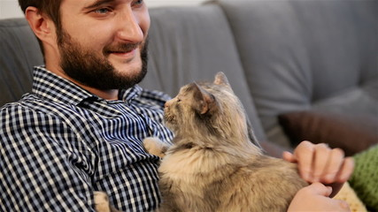young adult man fondles and caresses  cat. close-up