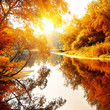 River in a delightful autumn forest - 72886696