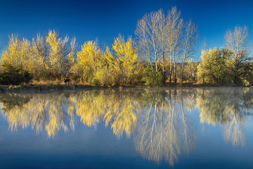 Coot Lake Autumn Reflections