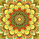 Colorful flower striped mandala