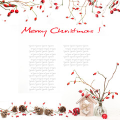 Winter background with red berries