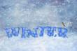canvas print picture - Winter Robin