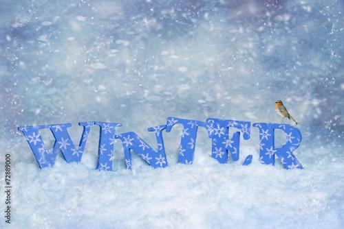 canvas print picture Winter Robin