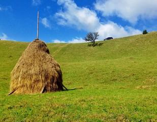 nature in rural Romania
