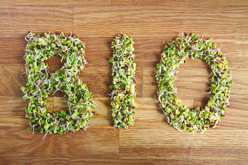 Bio word made of organic sprouts