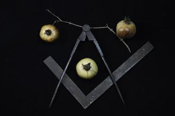 Freemasonry Symbols: Pomegranates, Square, Compass.