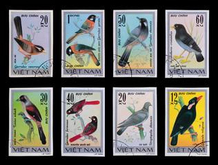 Post stamp. Birds