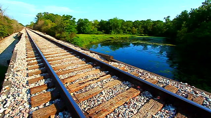 Railroad Tracks through Illinois Forest