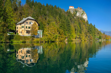 Bank of lake Bled in Autumn