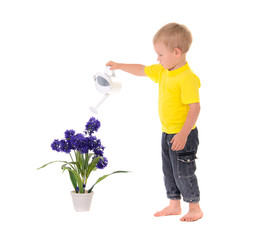 little boy pouring on flower