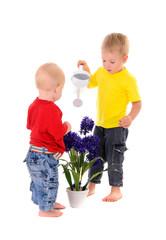 children pouring on flower