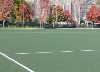 College Sports Field