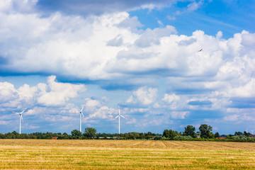 Wind turbines.  meadow with wind turbines