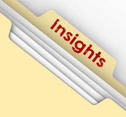 Insight Ideas Communication Information Analysis Manila File Fol