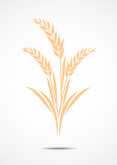 Wheat icon isolated on white