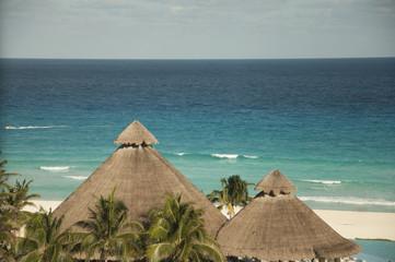 Palmeras a la orilla del mar de México