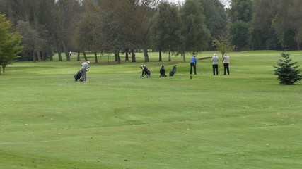 Senior golfers playing golf