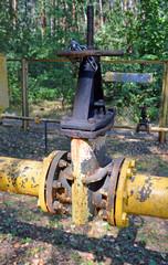 Газовый распределитель в лесу