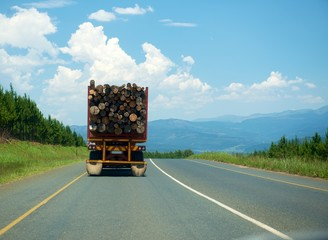 Timber truck driven on the road