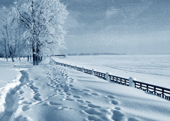 Winter nature,