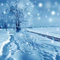 Winter nature, snowstorm