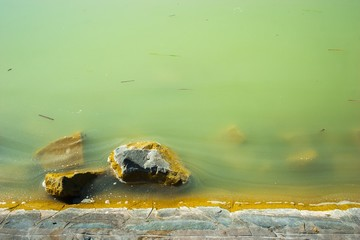 Green water with stones