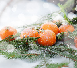 New Card with Tangerines Decorated as Fir-tree Toys