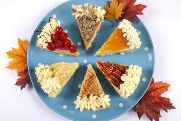 Slices of a Variety of Thanksgiving Pie