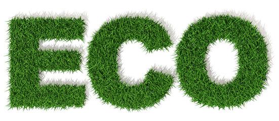 ECO lettere erba verde, isolata su fondo bianco