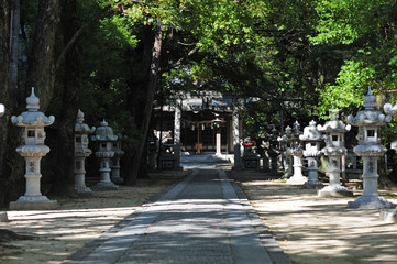 Tokura Kasuga Shrine-4