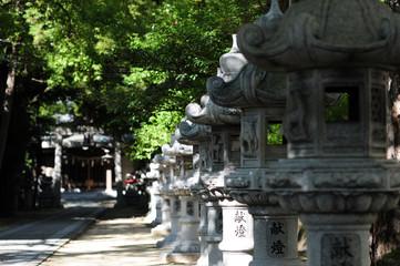 Tokura Kasuga Shrine-6