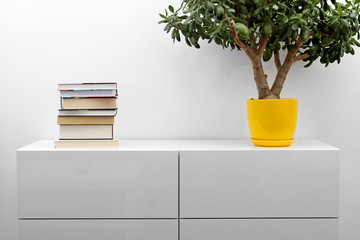white commode with stack of books and flower pot