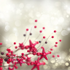 branch of christmas stars and berries