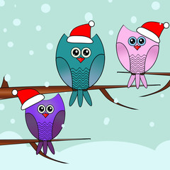 Christmas greeting card with owls